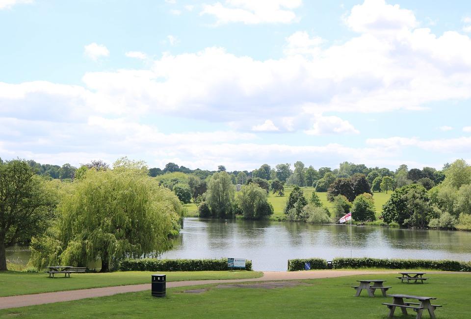 The Landscaped Park