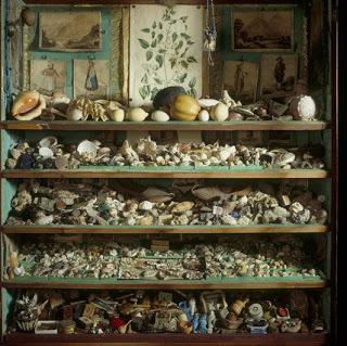 Cabinets of curiosities la ronde